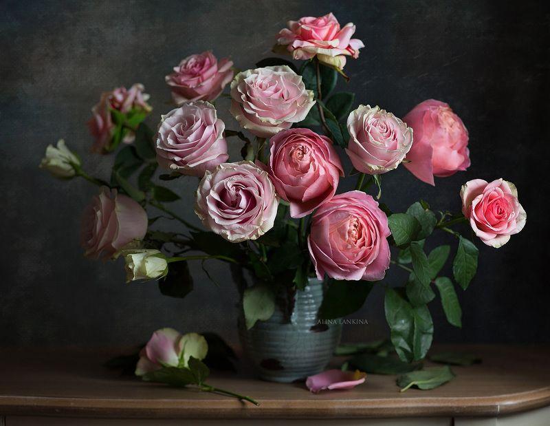 натюрморт, фотонатюрморт, цветы, розы, букет, свет, настроение, алина ланкина ***photo preview