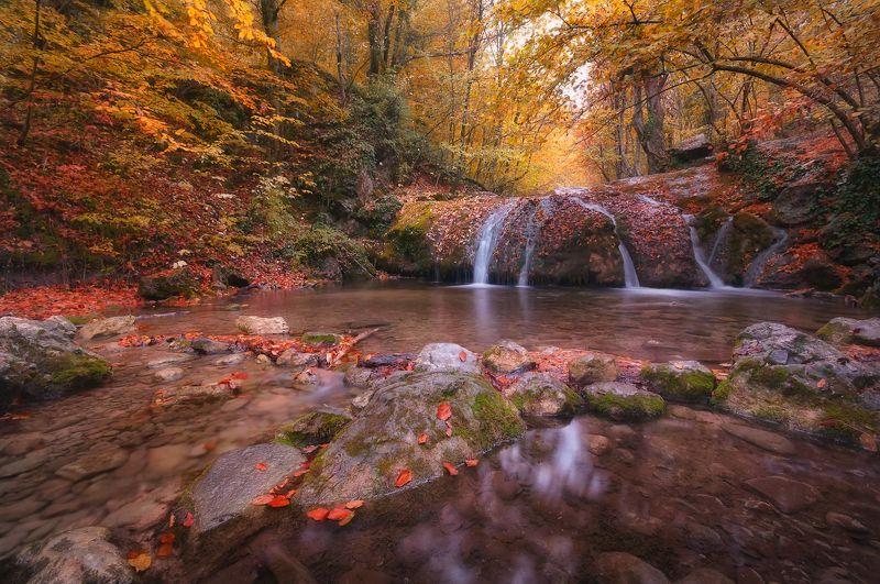 Осень в ущелье Хапхалphoto preview