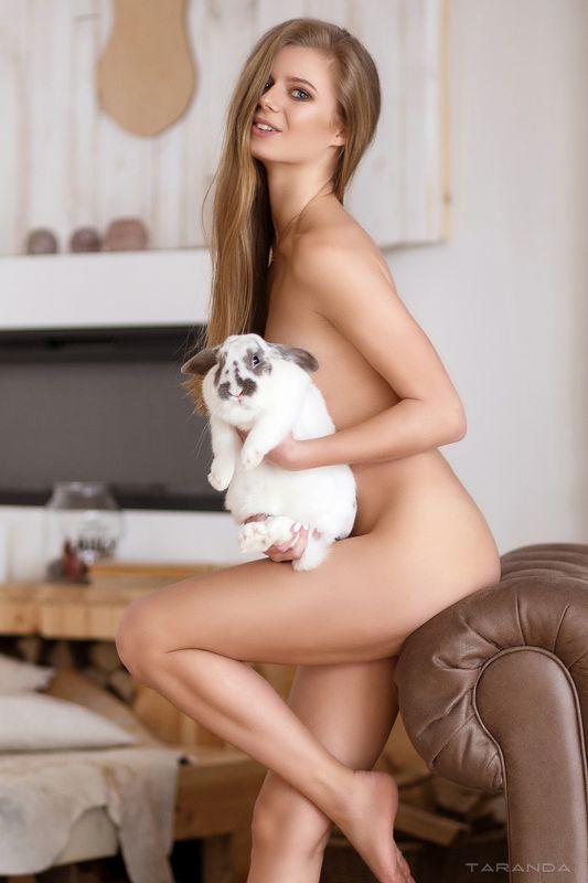 kiev, nu, nude, sexy, ukraine, girl, model, studio, light, play Follow the rabbitphoto preview
