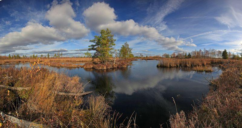 Шатура. Шатурские болота.photo preview