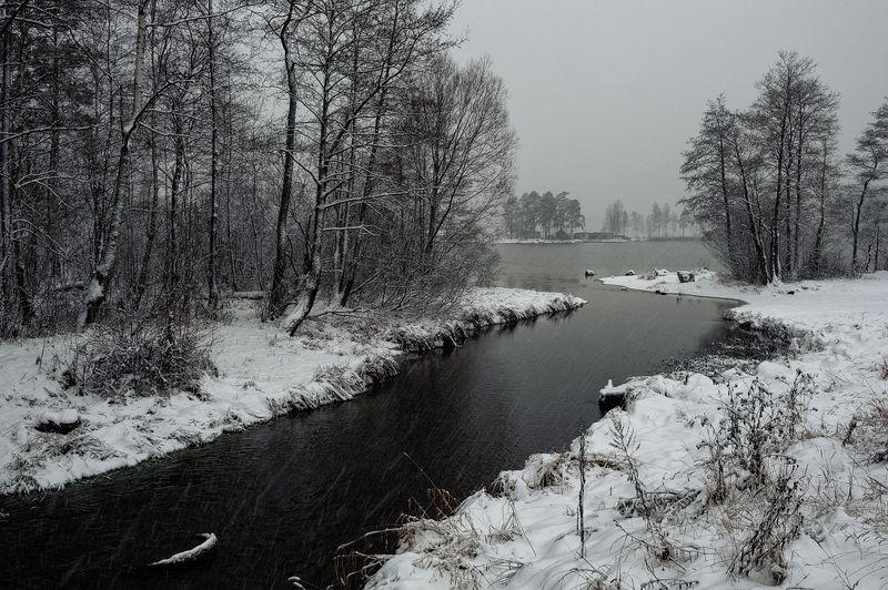 осень,ноябрь,предзимье,первоснежное,снег,озеро,берег Первоснежноеphoto preview