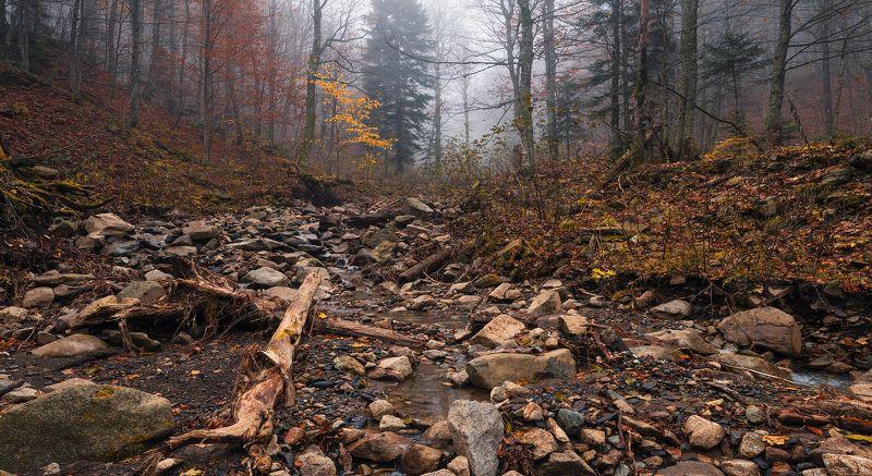 Осень на неизвестном ручьеphoto preview