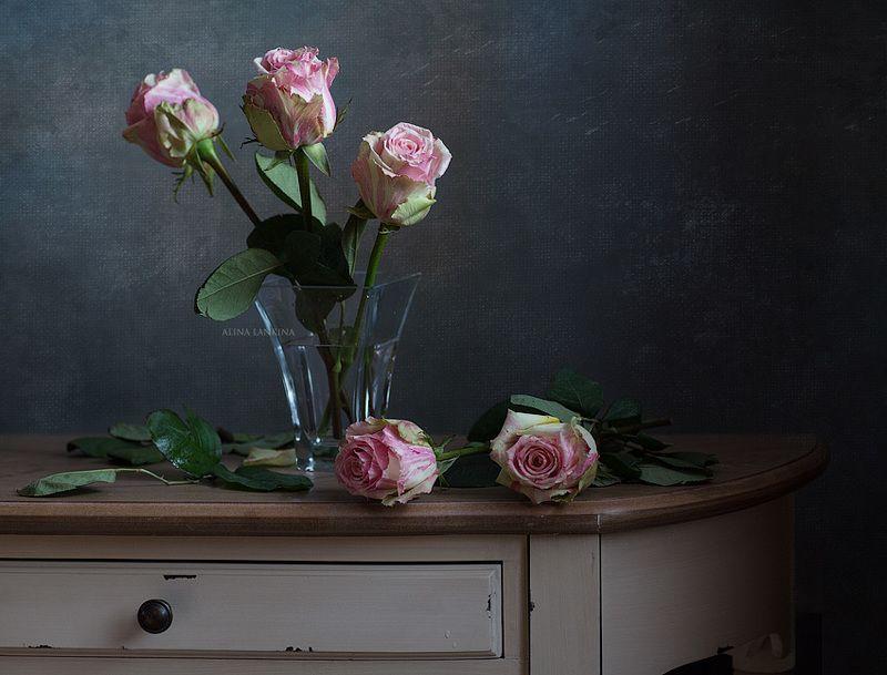 натюрморт, фотонатюрморт, цветы, розы, свет ***photo preview