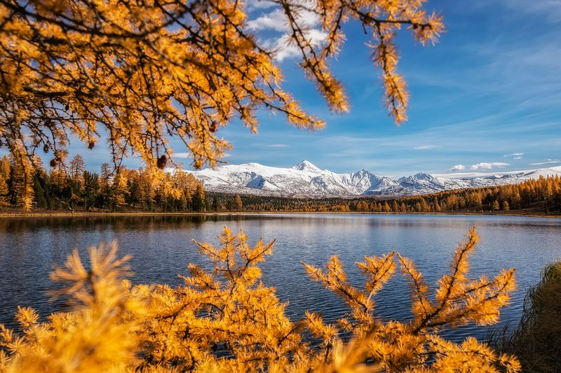 алтай, золотая осень, горы, озеро золото Алтаяphoto preview