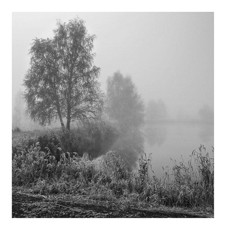 Тихая осеньphoto preview