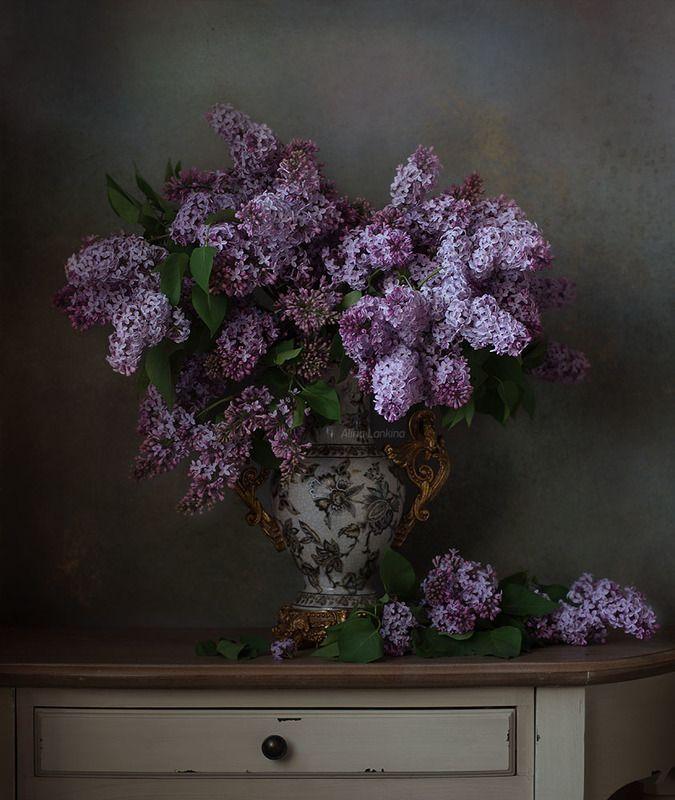 натюрморт, цветы, букет, сирень, весна, ваза, свет ***photo preview