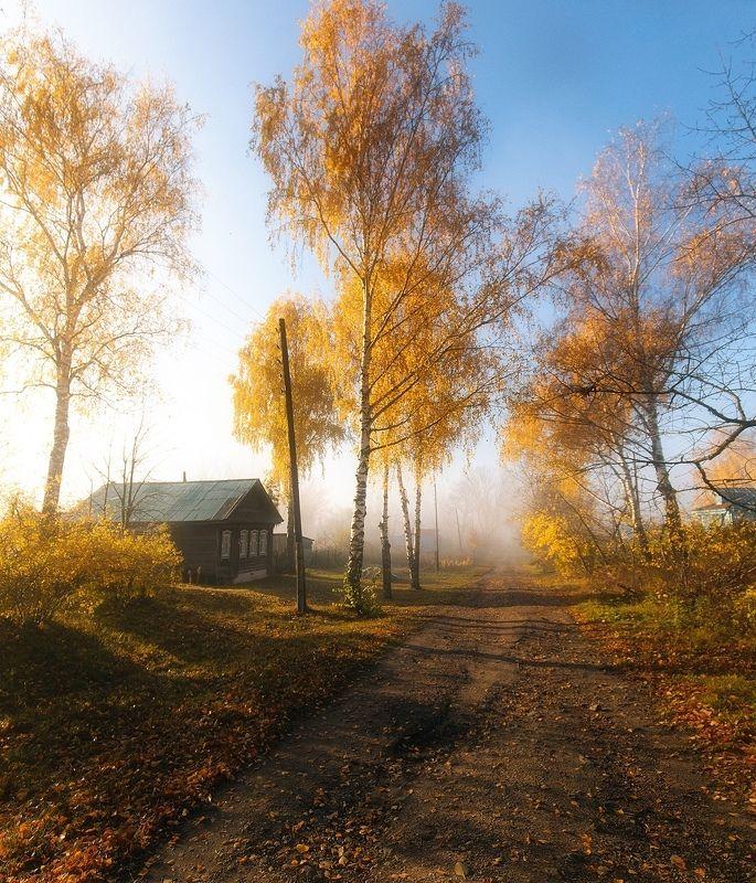 осень, туман, деревня, утро Утреннееphoto preview