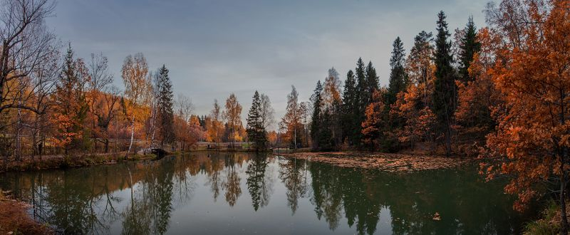 подмосоквье, октябрь Эта осень...photo preview