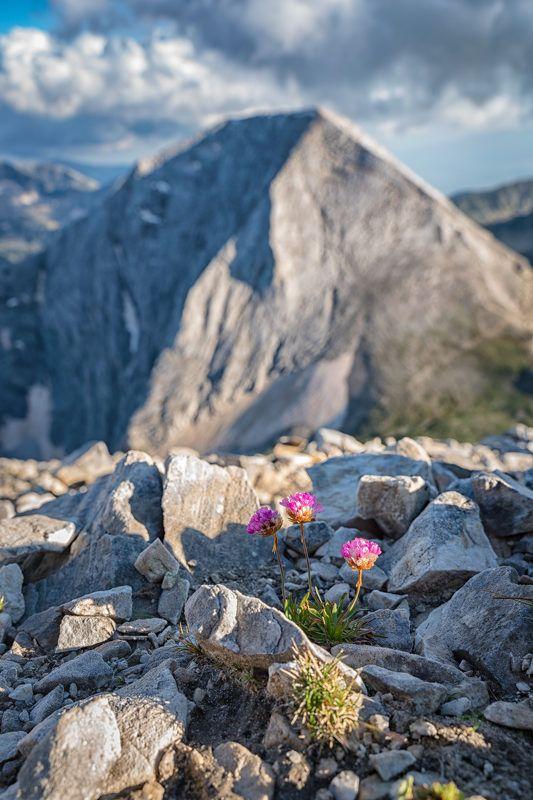 вершина Вихрен-2914 мphoto preview