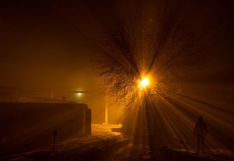 ночь туман россия велосипед Fogphoto preview