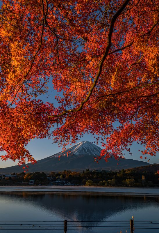 fuji, landscape, japan, autumn, nature, mountain, lake, japan Beautiful Mount Fuji!photo preview