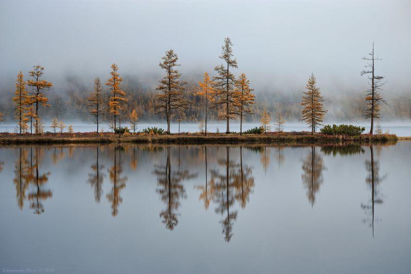 2018, россия, колыма, утро, осень, горы, лиственницы, деревья, туман, отражение В зазеркалье Колымыphoto preview