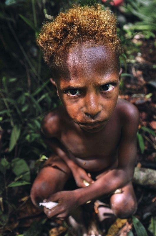 короваи, папуа, джунгли, новаягвинея, портрет, korowai, tribe, papua Дитя джунглейphoto preview