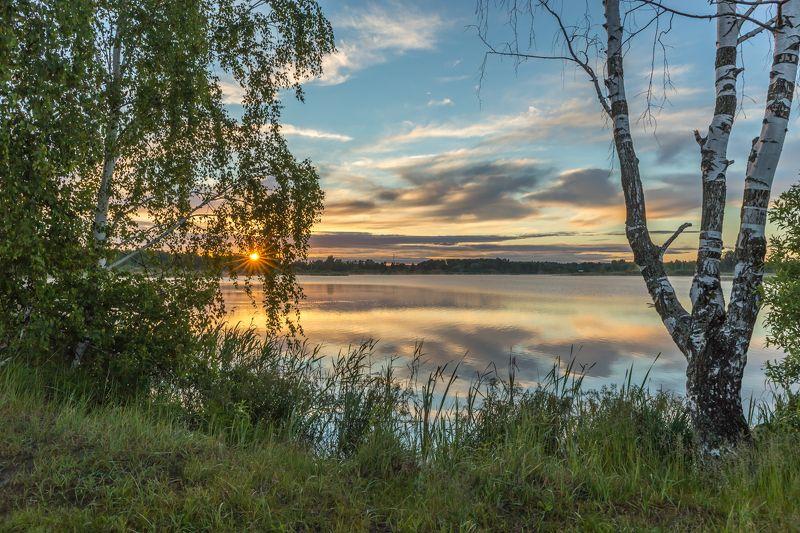 утро, рассвет, озеро, лето, дерево, солнце У засохшей берёзы.photo preview