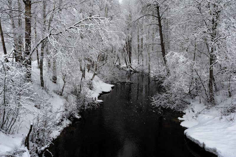 зима,деревья,ветви,снег,вода,река,пейзаж Зимняя сказкаphoto preview