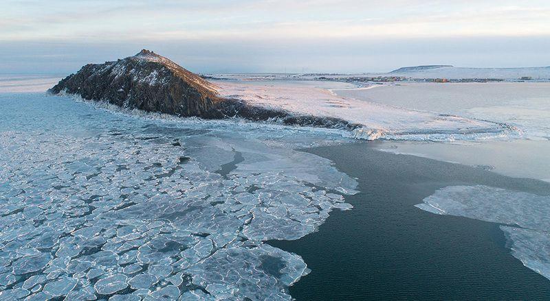 чукотка арктика море медведь белый полярный морской мыс кожевникова Остров полярных медведей...photo preview