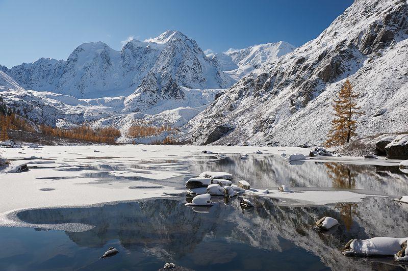 Зимняяphoto preview