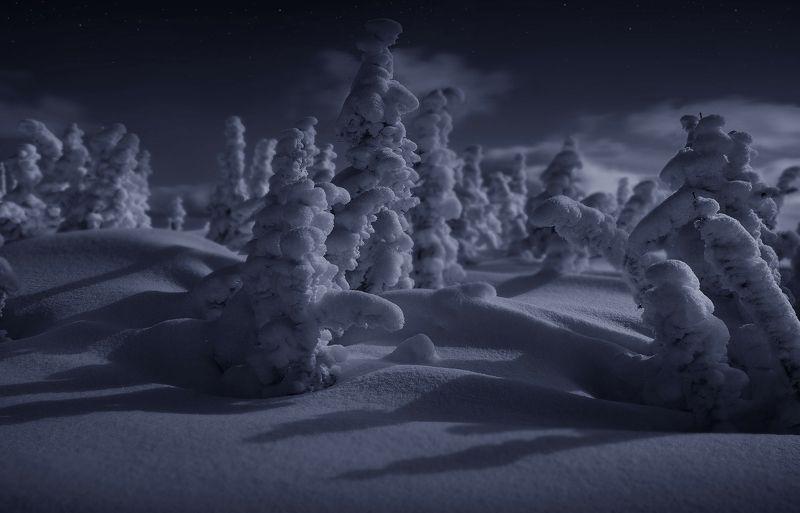 зима, кузбасс, шерегеш, снег, горы, таштагол, ночь Снежная вечеринка. Юг Кузбассаphoto preview