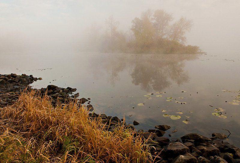 киев,гидропарк,осень,туман,утро, Осеннее утроphoto preview
