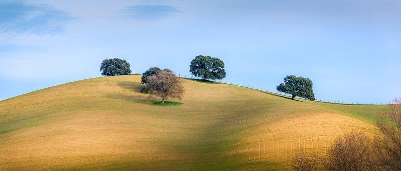 испания, андалусия, панорама Тоскана? Нет, Андалусияphoto preview