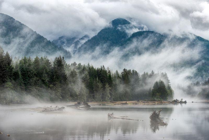 лес, туман, река, вода, горы, осень, облака, пейзаж, Канада В туманеphoto preview