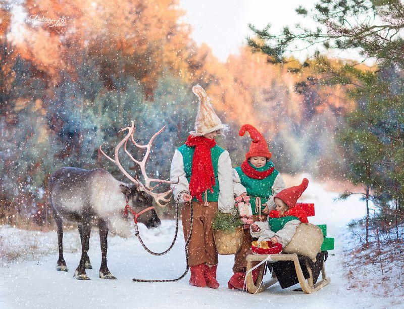 Милые помощники Деда Мороза :-) Сказка начинается! photo preview
