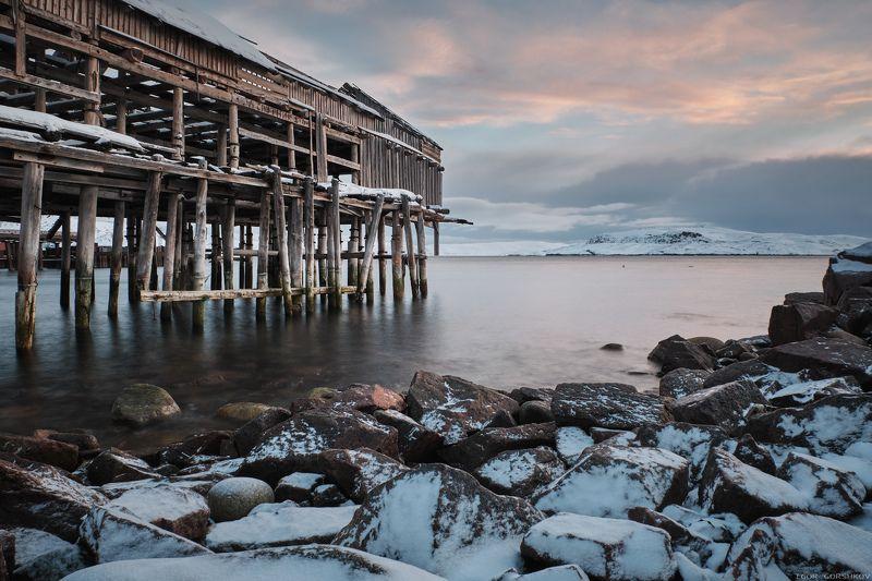 баренцево море,териберка,утро,зима,крайний север,заполярный круг,пейзаж,россия,,берег,снег,лёд,рассвет,камни,постройка,заброшка Рассвет в Лодейной губе Баренцева моряphoto preview