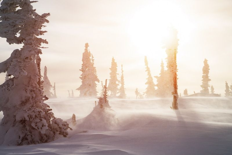 шерегеш, зима, снег, горы, ветер, метель, мороз Разговор с ветром! Шерегешphoto preview
