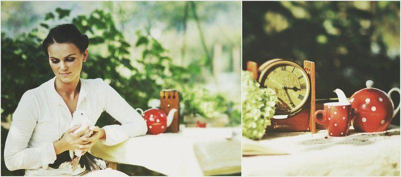 голуб, натюрморт, осень Відіслані рядки...листи...photo preview