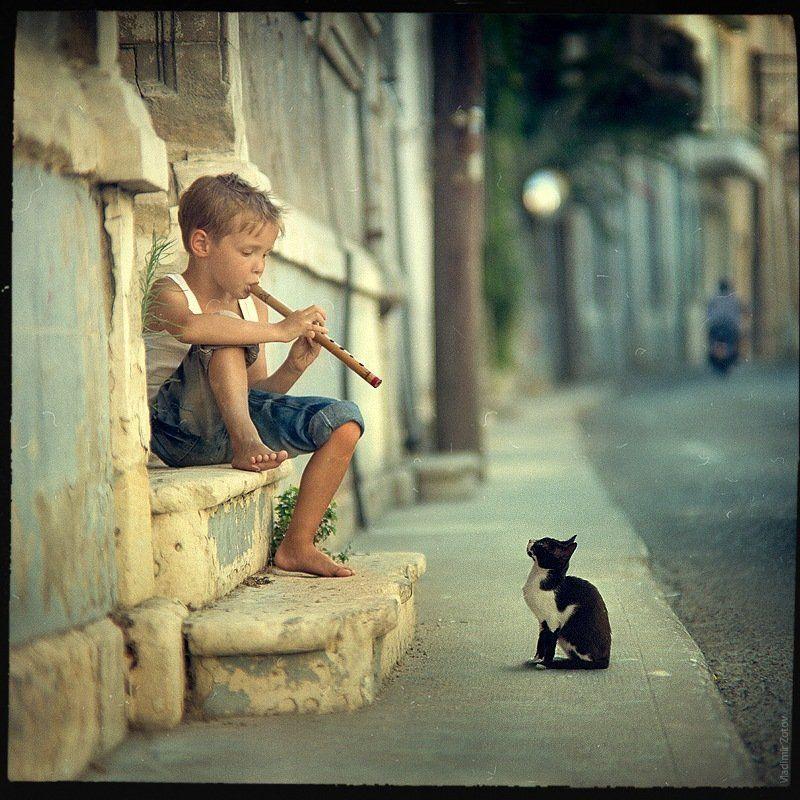 мальчик, дудочка, кот, кипр, улица, музыка, мелодия, слушать, играть -\