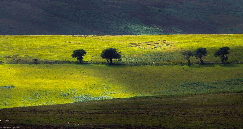 exmoor, devon, england Эксмурский знойphoto preview