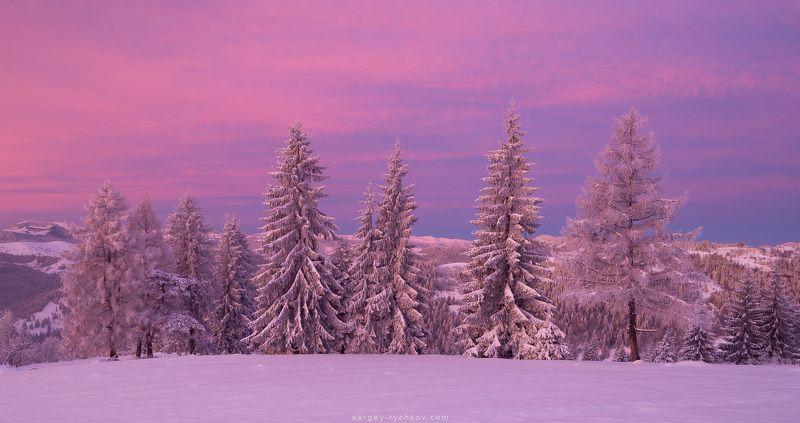карпаты, горы, украина, пейзаж, зима, лес, снег, winter, mountains, carpathians, ukraine, nature, snow, landscape, Покутские горыphoto preview