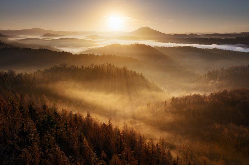 czech republic, bohemian switzerland, trees, fog, mist, morning, sky, beautiful, europe, hills, horizons, layers, valleys Golden Decemberphoto preview