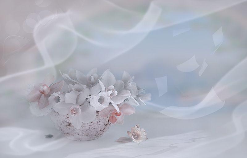 букет композиция розы орхидеи радость улыбка вдохновение Вдохновения!photo preview