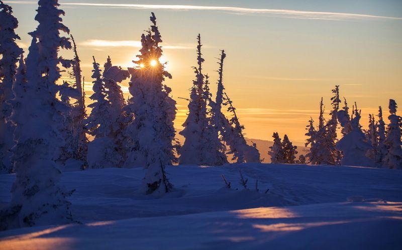 шерегеш, снег, ветер, метель, мороз, горы, деревья, пейзаж, природа, закат, снежинки Шерегеш*ские зарисовки декабря.photo preview