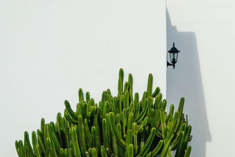 фонарь, кактус, лансароте, канарские острова Фонарь и кактусphoto preview