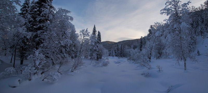 кузнецкий алатау, зима, снег, сибирь, лес, мороз, сугробы, восход, солнце, Сказочный лес в Рождество!photo preview