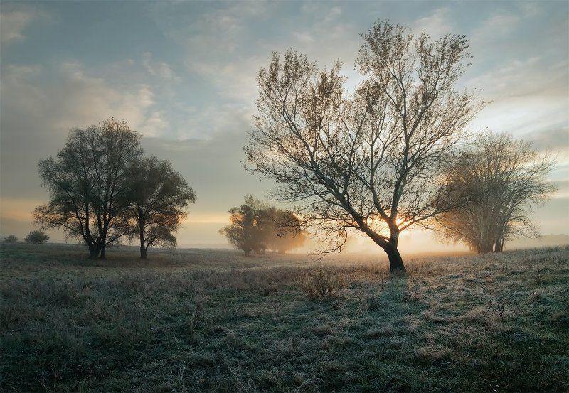Холодный осенний рассветphoto preview