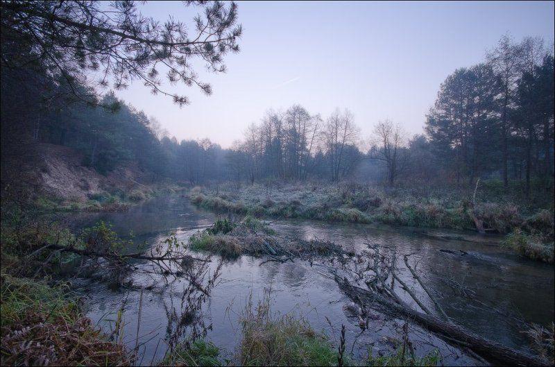 рассвет, река, октябрь, лес Холодный рассветphoto preview