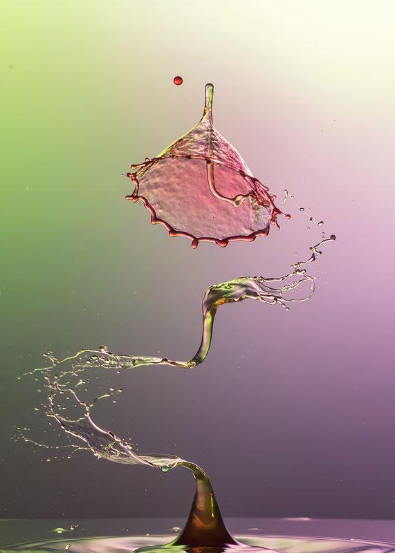 waterdrop,abstract,liquid,art, S dropphoto preview