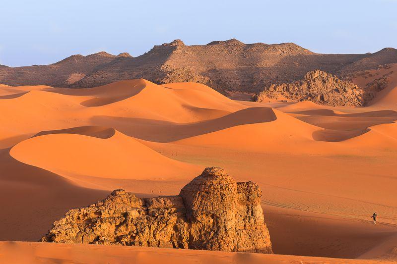 алжир, сахара, песок, дюны, тадрарт, пустыня Вечерняя прогулкаphoto preview