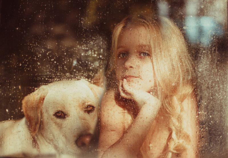 девочка, собака, портрет, окно, стекло, утро Мой другphoto preview