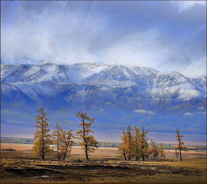 курай, осень, снег Снежный заряд над Кураем...photo preview