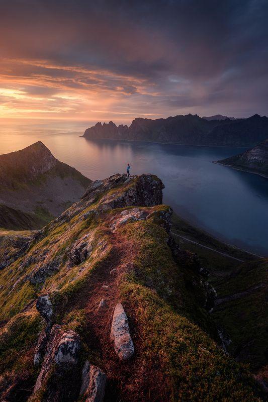 husfjellet, nature, landscape, nikon, senja, norway, norge, nord, пезаж, норвегия, сенья Husfjelletphoto preview