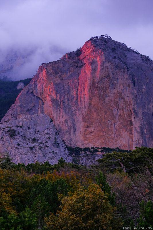 гора,закат,отсвет,шаан-кая,крым,горы,скалы,осень,вечер,тучи,туман,стена,пейзаж,природа,красный,лес Шаан-Кая в лучах закатаphoto preview