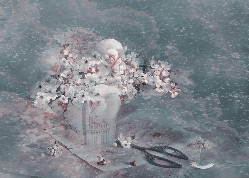 сон зима весна  абрикосовые  цветы старинные ножницы метель Зимний сонphoto preview