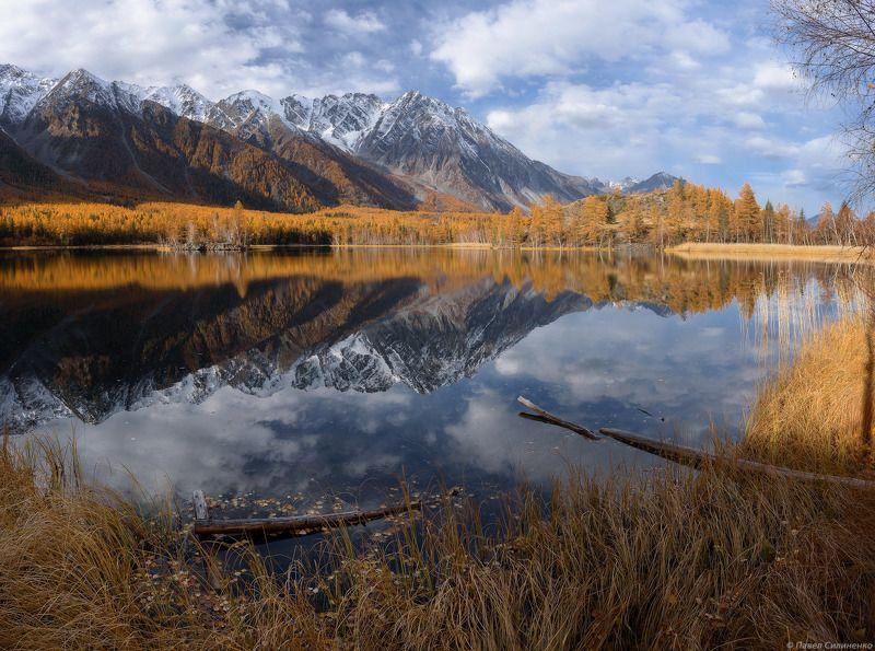 пейзаж, осень, горы, аргут, озеро, алтай, желтый, свет, лиственница, отражение Безымянноеphoto preview