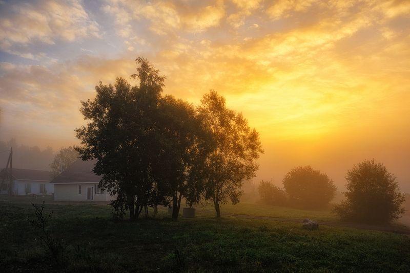 осень,сентябрь,тепло,утро,рассвет,свет,небо,пейзаж Осенним утром теплымphoto preview