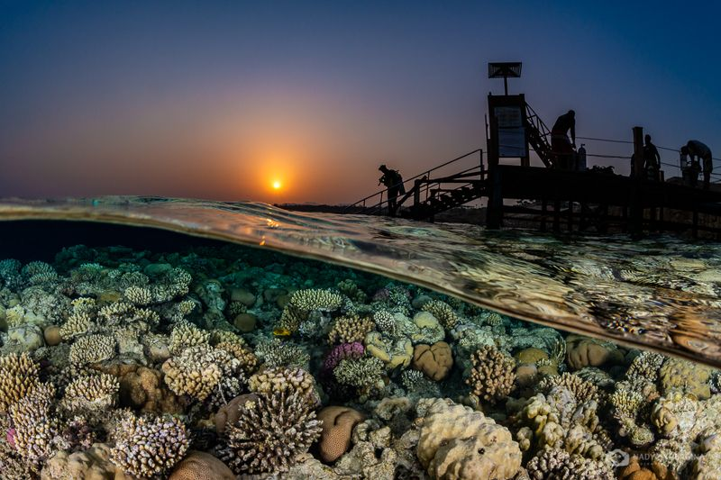 underwater, photography, sunset, split leve, above and below, over-under, egypt, sunset A Sunset Splitphoto preview