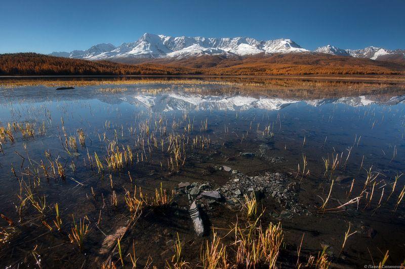 алтай, курай, пейзаж, осень, горы, озеро, зеркало, ледник, отражение Каракольphoto preview
